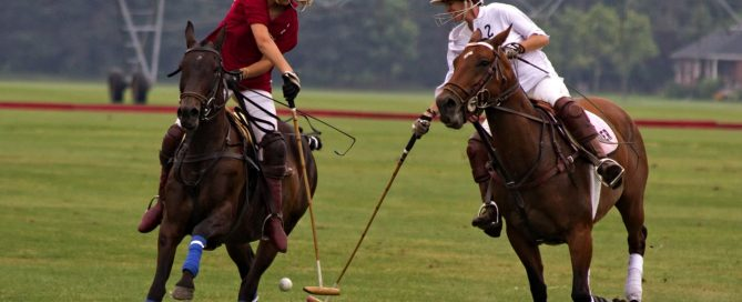 2 people on horses playing polo